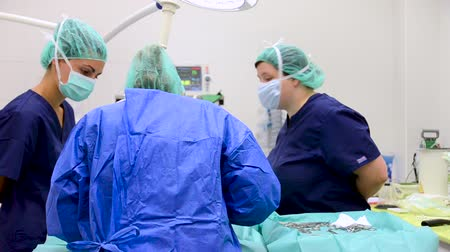 scalpel : Female medical team performing surgical operation.