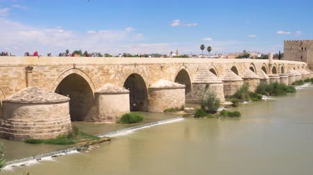 andalucia : The Roman Bridge Of Cordoba Andalucia, Spain.
