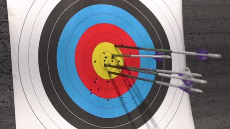 hedef : Target for archery shooting. Arrow hitting the target.