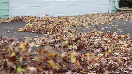 Guy Leaf Blowing in Front of Garage