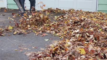 Leaf Blowing by garage Vídeos