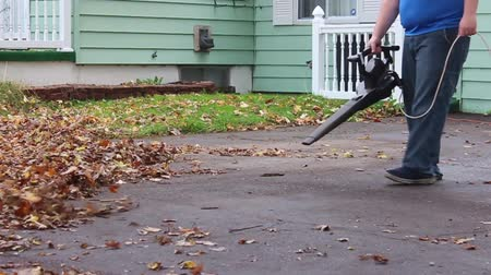Blowing Leafs from Driveway to Yard