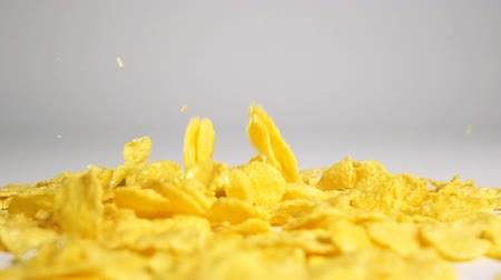 milho : Crisp tasty cornflakes falling down on dry white surface and bouncing and flying to different sides with high speed camera in slow motion mode. White background isolated.