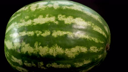 rind : Ultra HD. Big green striped fresh tasty wet watermelon. Skating camera close-up shot at black bg isolated. Soft light and shadows. Stock Footage