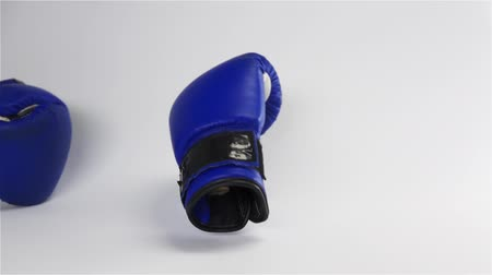 серый фон : Slow motion. Vintage dark blue color Boxing gloves dropping and bouncing on white surface. Challenge Adversary to fight concept. Стоковые видеозаписи