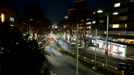 Time lapse of Omotesandos main road in Tokyo