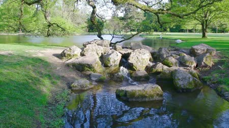 arquipélago : Lake in the public park close to Baden-Baden, Rastatt, water runs in a small waterfall in a Brook Stock Footage