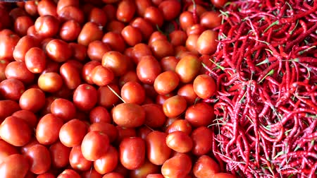 multi colorido : Pile of organic Tomatoes and red chili for sale at traditional vegetables market