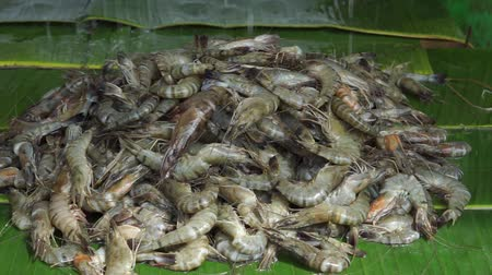 Pile of shrimps for sale at seafood market Wideo