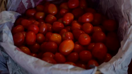 Group of red tomatoes on a basket at market agriculture farm