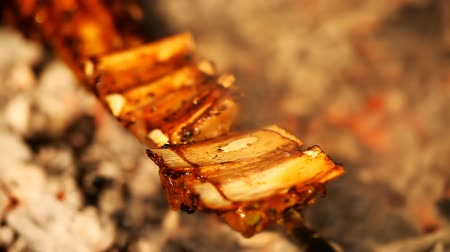 ribs : Juicy slices of ribs cooked in the grill Stock Footage