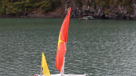 Flag of Vietnam on board the Dragon Boat Stock Footage