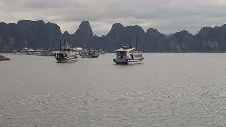 halong : Halong Bay in Vietnam.Beautiful Landscape Marine