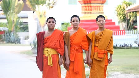 šafrán : LUANG PRABANG, LAOS - DECEMBER 9, 2016 : A group of young Buddhist monks return from the city to their Buddhist school at the temple.