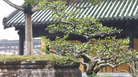 színárnyalat : Vietnam. Imperial Royal Palace in Hue.The forbidden city of the emperors Stock mozgókép