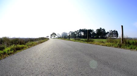 bicycle : Man on road bike riding down open country road. Stock Footage