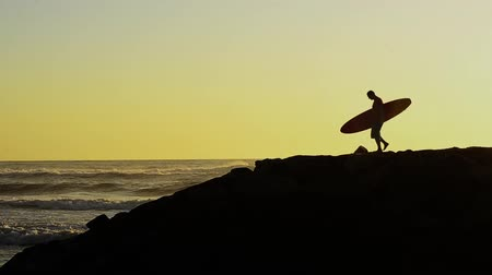 серфер : Male surfer holding his surfboard watching the waves at sunset.