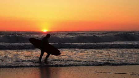szörfös : Male surfer holding his surfboard running on the beach at sunset.