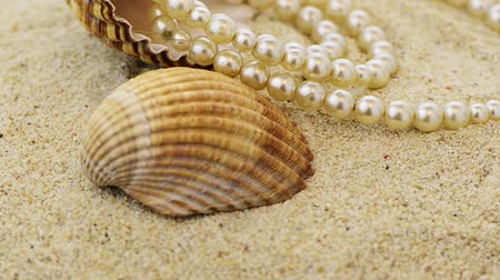 оболочка : Pearls necklace on beach sand with shells rotating.