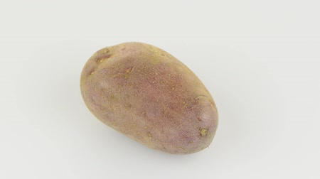 ve slupce : New potato tuber rotating on white background.