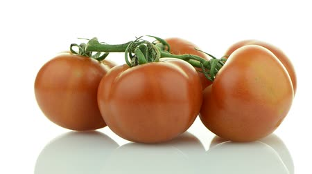 rajčata : Closeup of tomatoes on the vine rotating isolated on white background.