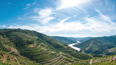 portugalsko : Timelapse of terraced vineyards in Douro Valley, Alto Douro Wine Region in northern Portugal, officially designated by UNESCO as World Heritage Site