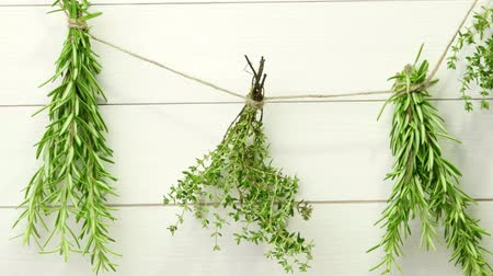 mar : Single twigs of Thyme and Rosemary on Wooden Board. Vídeos