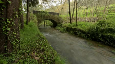 timelapse : Old rock bridge over Filveda river in Albergaria-a-Velha, Portugal. Stock Footage