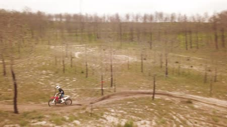 enduro : Aerial drone shot view of one enduro motorcycle drive through path or sandy trail on pine trees field during off road training in countryside. Adrenaline rush fun. Stock Footage