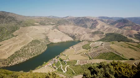 szőlőművelés : Viewpoint of Vargelas allows to see a vast landscape on the Douro and its man-made slopes. Douro Region, famous Port Wine Region, Portugal. Stock mozgókép