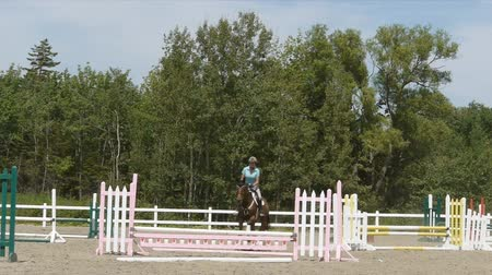 égua : Horse jumps the fence and comes to a stop right at the camera. Vídeos