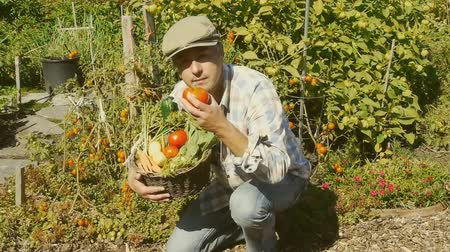 bahçıvan : A very happy gardener showing the result of his labor Stok Video