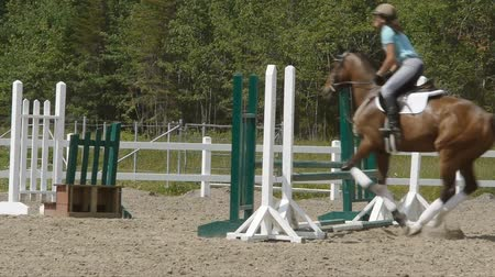 koń : Horse riding series. The horse jump the fence.