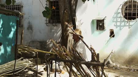striving : South American country man working on sugar canes