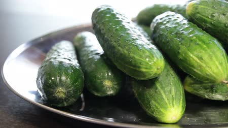 large plate with fresh cucumbers. cucumbers are not cut.close-up.the camera moves around this to the left