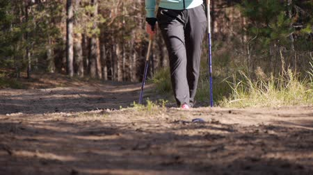 escandinavo : Legs of a woman practicing nordic walking in the autumn forest, shes going in the direction of the camera.Front view