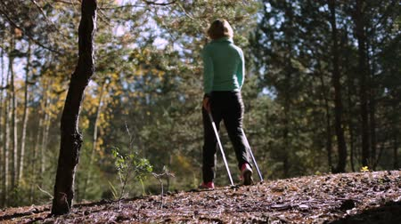 escandinavo : Woman practicing Nordic Walking in an autumn forest, it comes from us stepping on coniferous needles.shadows from the sun Vídeos