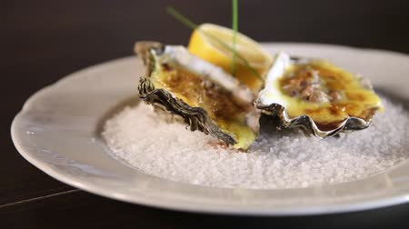 shellfish : Oysters cooked with Dutch sauce served on a plate with coarse salt. Hollandaise sauce