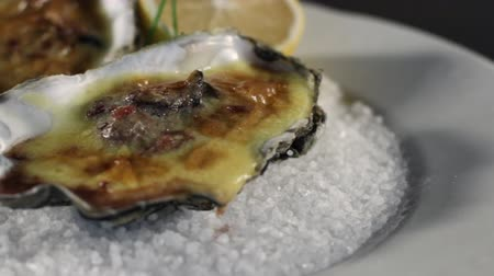 hrubý : Close-up of Oysters cooked with Hollandaise sauce.Plate with coarse salt.Dutch sauce