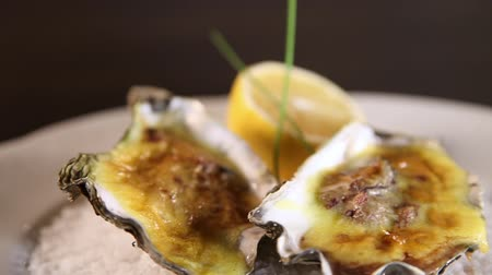 osztriga : Oysters cooked with Hollandaise sauce served on a plate with coarse salt.Dutch sauce.Super close-up