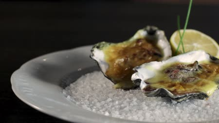 oysters : Close-up of Oysters cooked with Dutch sauce.Plate with coarse salt.Hollandaise sauce