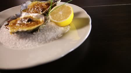 hrubý : Oysters cooked with Hollandaise sauce.Plate with coarse salt.Dutch sauce.Copy space