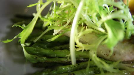 szczupak : Close-up of blanched asparagus and grilled fillet of pike perch, served with lemon and herbs on a white plate.Macro Wideo