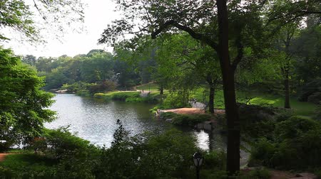 центральный : A view of the pond in Central Park, New York