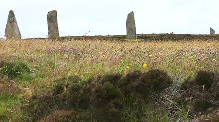arqueológico : Ring of Brodgar in Orkney found in Scotland Stock Footage
