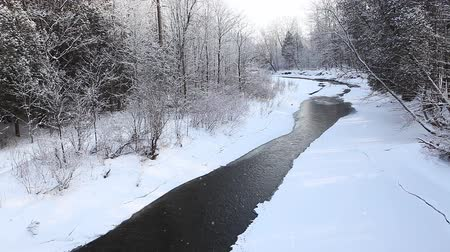 enrolamento : A winter creek with a small amount of open water