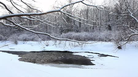 enrolamento : Winter creek with a small amount of open water