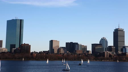 arka görünüm : 4K UltraHD Timelapse Boston skyline with sailboats Stok Video