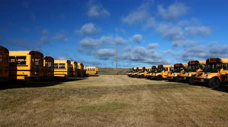 porta : 4K UltraHD Timelapse of rows of parked school buses Vídeos