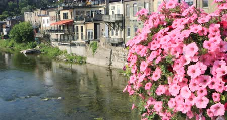 visitante : Grand River at Paris, Canada with flowers in front 4K